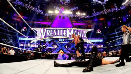 Brock-Lesnar-Undertaker-WrestleMania-XXX-30